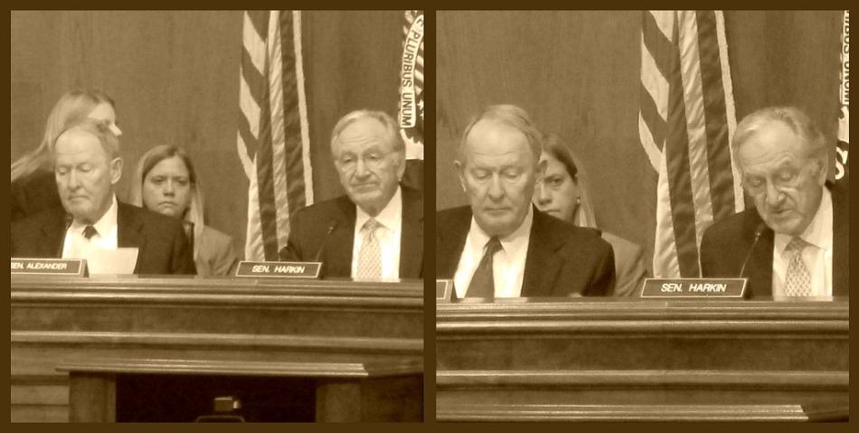 Senator Harkin (D) and Senator Alexander (R)