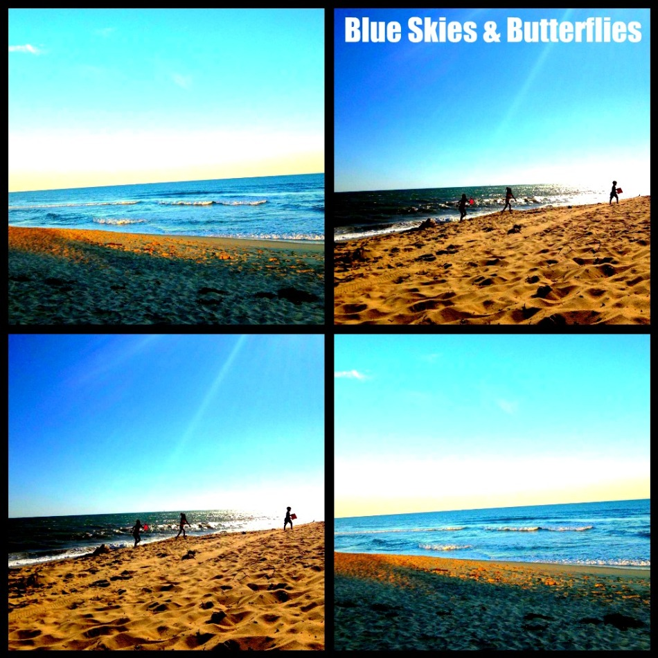 Blue Skies and Butterflies